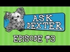 Ask Dexter: Travel, Pep Rap & Hooman for a Day!