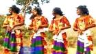New Ethiopian Amharic Music 2013 - መሀሪ ደገፋው - አልወጣም ከወሎ -
