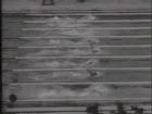 Olympics 1964 Tokyo